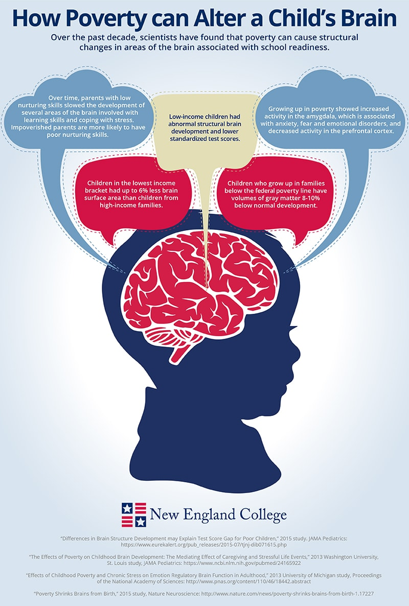 Infographic on how poverty affects a child's brain